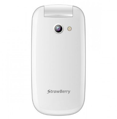 Samsung strawberry flip s1272 putih